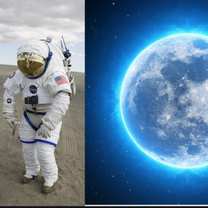 Why Just Watch The Moon, When You Can Go Live There?